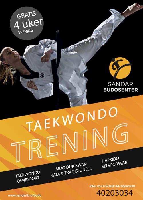 Sandar Budosenter, Taekwondo og selvforsvar